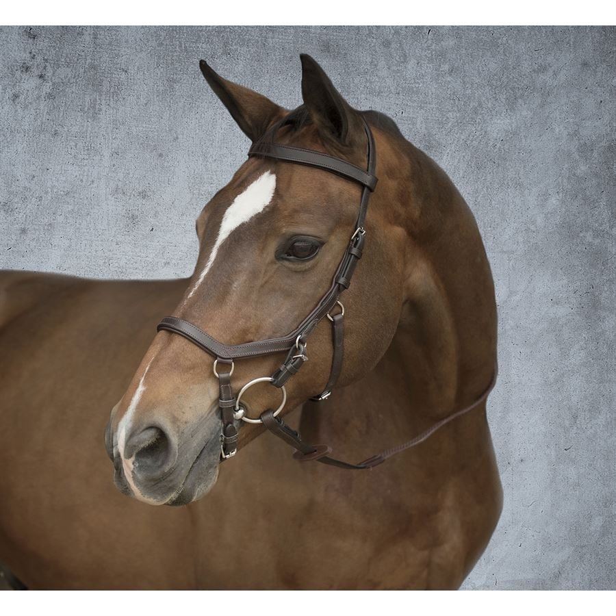 Standard Horse Rambo Micklem Competition Bridle Dark Havana