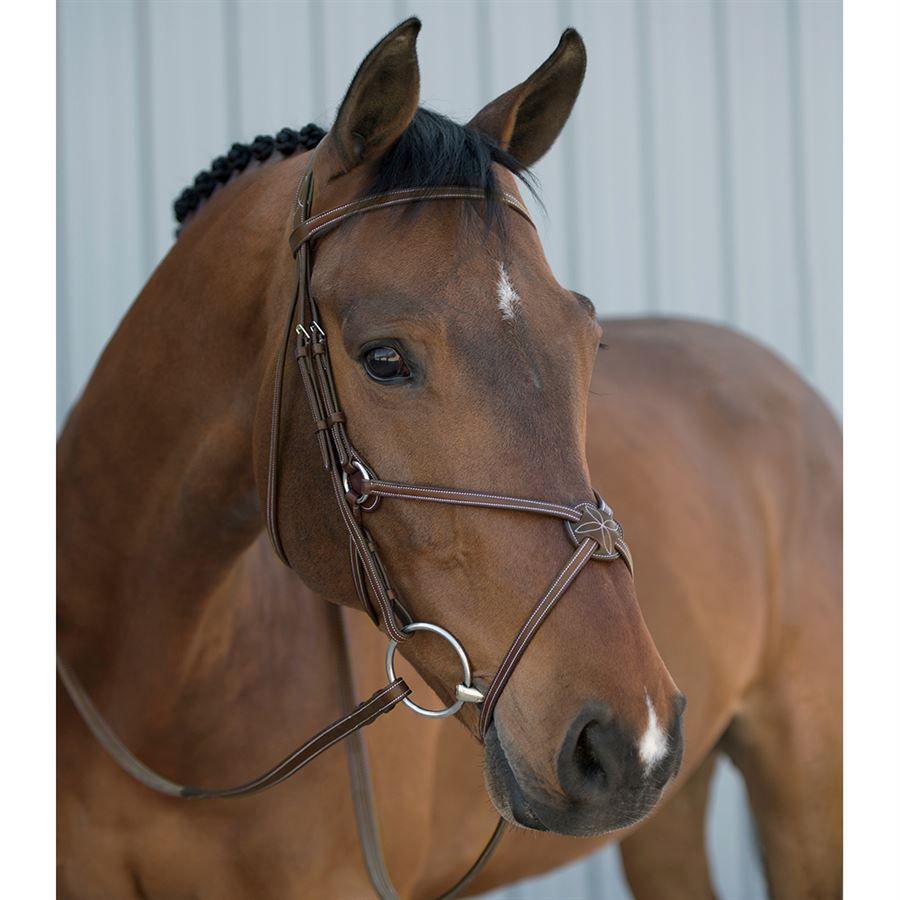 Crown Premier Figure 8 Bridle Brown Horse-Full Size